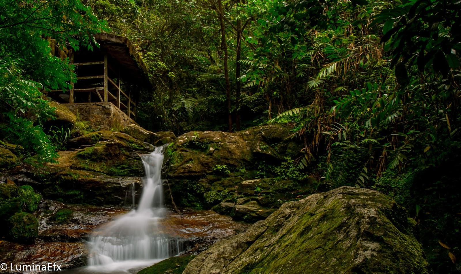 Obudu mountain reserve waterfall
